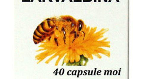 Larvalbina, sursa naturala de sanatate, vigoare si longevitate